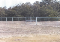 Chain Link Double Gate copy