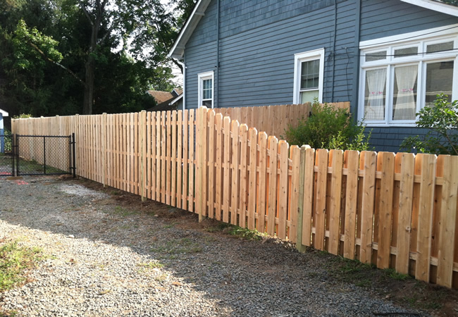 Cedar Board on Board Fence with 2 Foot Sweep