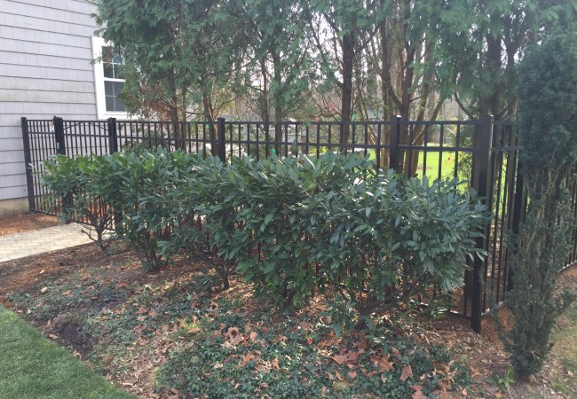 Jerith Style 202 Fence