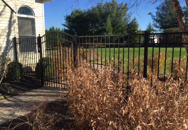 Black Aluminum Fence with Arched Gate