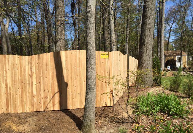 Solid Convex Cedar Fence