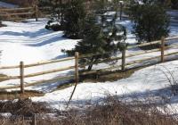 Wood Split Rail