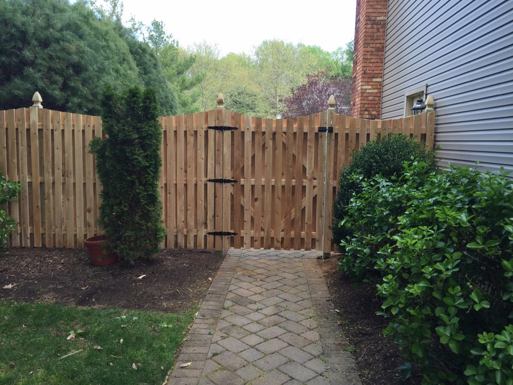 Convex Cedar Board on Board Fence